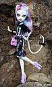 Кукла Monster High Катрин Де Мяу (Catrine DeMew ) Новый Скарместр Монстер Хай Школа монстров, фото 3