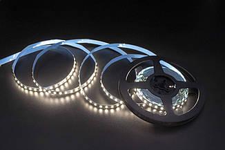 Skarlat LED LV-2835-120 4000K