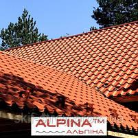 Металлочерепица АЛЬПИНА ALPINA 0.45мм матовый полиэстр Украина, фото 2