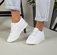36,37,38,39 Модные женские кожаные кеды кроссовки с перфорацией белые SE69RN19IL
