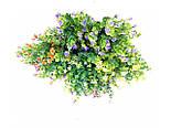 Букет самшит квітучий різнобарвний , 35см (20 шт в уп.), фото 2