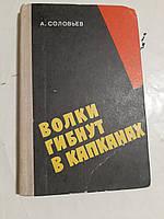 Волки гибнут в капканах А.Соловьев