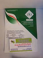 Семена огурца ЗКИ F1 (Vetomag), 250 семян — ранний гибрид (42 дня), партенокарпик, корнишон