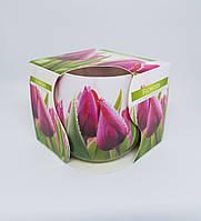 Свечи ароматизированные в стакане Bispol Тюльпан