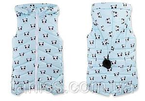 Теплая демисезонная жилетка  для девочки Бубон, съемный капюшон, р.98,104,110,116,122,128,134 Панда