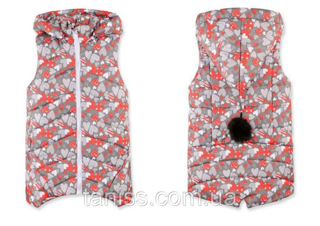 Теплая демисезонная жилетка  для девочки Бубон, съемный капюшон, р.98,104, Сердечки