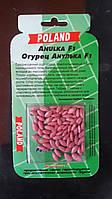 Огурец Анулька ( драж ) 45-50  семян