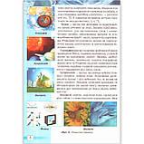 Підручник Природознавство 5 клас Авт: Ярошенко О. Бойко В. Вид: Світоч, фото 5