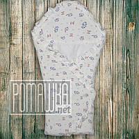 Демисезонный конверт плед весна осень для выписки новорожденного велюр осенний весенний одеяло 2898 Голубой