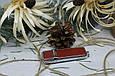 Кожаная флешка с индивидуальной гравировкой звичайна з червоної шкіри на 64Gb (3.0), фото 6