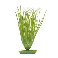 Аквариумное растение Hagen Marina Hairgrass, 20см