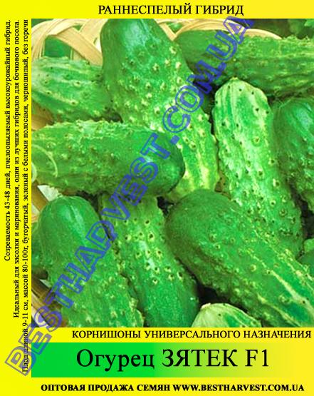 Семена огурца Зятек F1 5кг (мешок)
