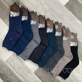 Шкарпетки чоловічі термо махрові кашемір Q&S, розмір 41-47, асорті, 8002