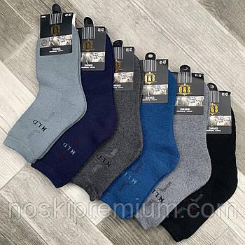 Шкарпетки чоловічі термо махрові кашемір Q&S, розмір 41-47, асорті, 8003