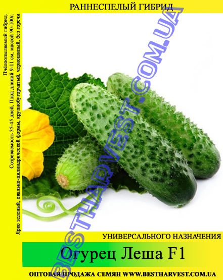 Семена огурца Леша F1 0,5кг