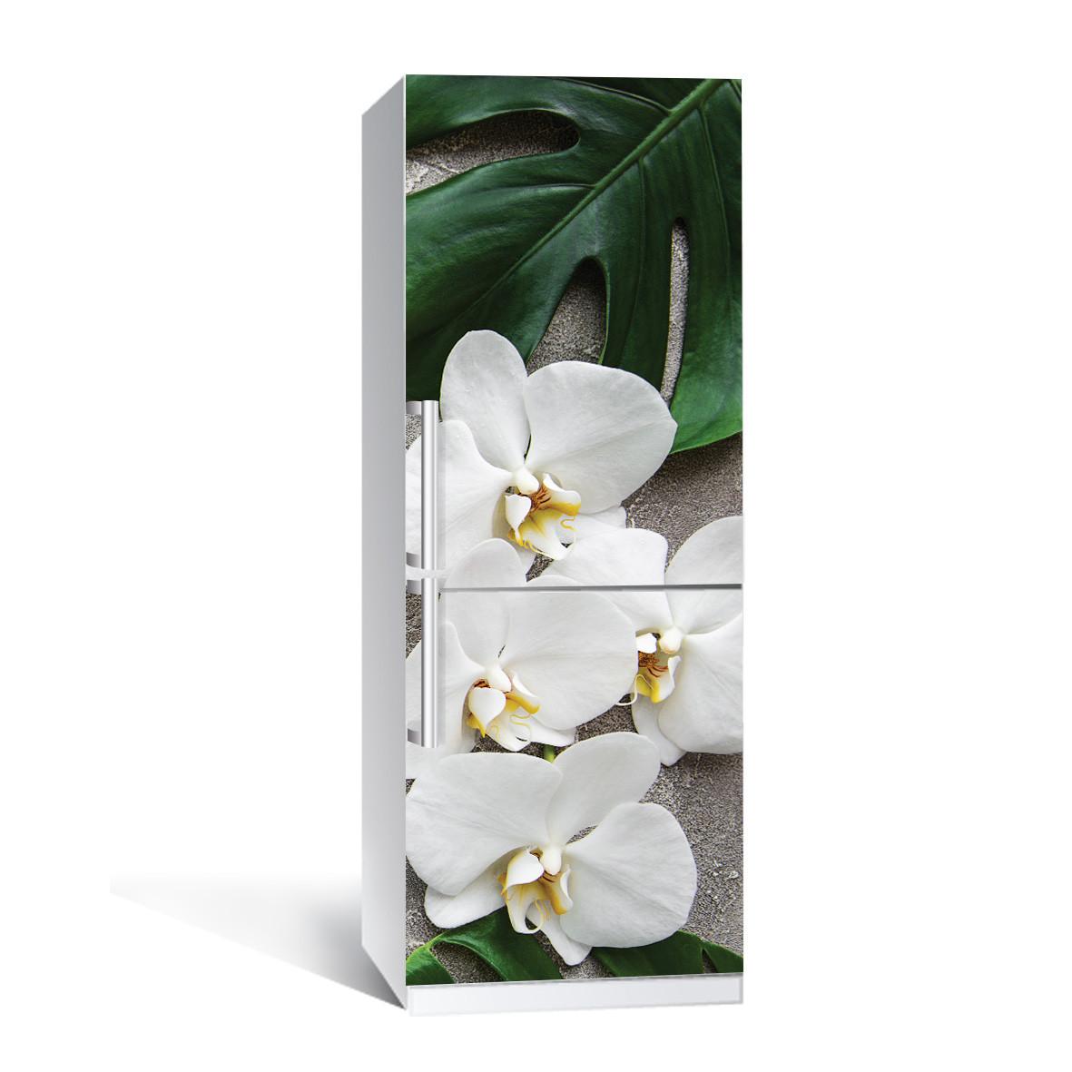 Наклейка на холодильник Zatarga Листья монстеры 650х2000мм виниловая 3Д наклейка декор на кухню самоклеящаяся