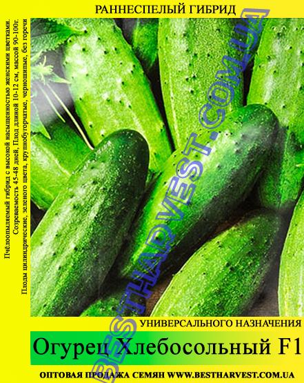 Семена огурца Хлебосольный F1 0,5кг