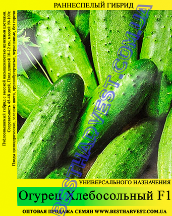 Семена огурца Хлебосольный F1 0,5кг, фото 2