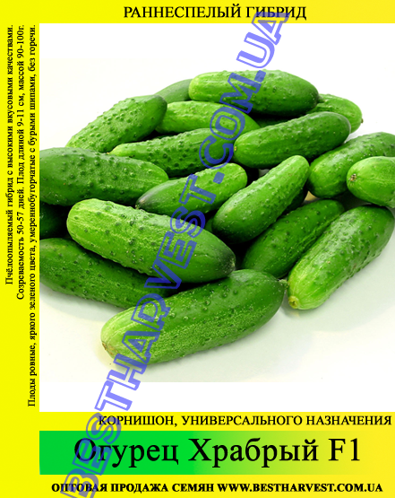 Семена огурца Храбрый F1 0,5 кг
