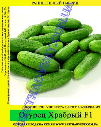 Семена огурца Храбрый F1 0,5 кг, фото 2