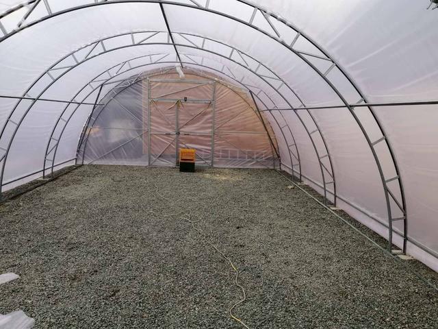 фермерская теплица урожай