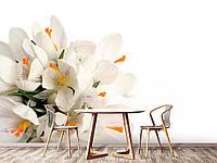 """Флизелиновые Фотообои """"Цветы (1002365)"""" от производителя за 1 день. Любая картинка и размер. ЭКО-обои"""
