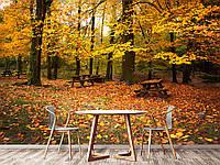 """Флизелиновые Фотообои """"Осень (1002365)"""" от производителя за 1 день. Любая картинка и размер. ЭКО-обои"""
