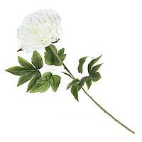 Искуственный цветок пион 69 см Белый. Шикарный!