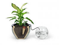 Система капельного полива комнатных растений, цветов и вазонов Blumat