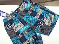 Пляжные шорты 8949, фото 1