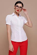 Классическая женская однотонная белая блузка с черными пуговицами и рукавами-фонариками Эльза к/р, фото 2