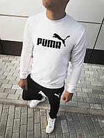 Мужской спортивный костюм принт Puma | лого+имя