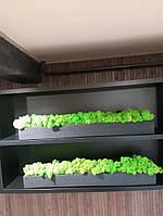 Бетонну кашпо зі стабілізованим мохом, фото 7