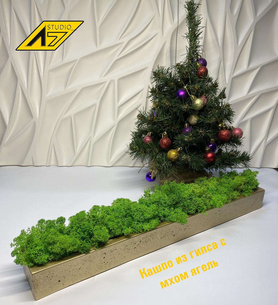 Стабилизированный мох в кашпо Gold-Green moss decor