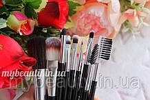 Набор кисточек для макияжа  из 10 инструментов