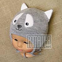 Вязаная шапочка осень весна р 36-40 0-5 мес на мальчика новорожденных малышей осенняя весенняя 6017 Серый 40