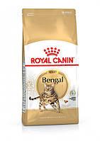 Сухой корм Royal Canin Bengal Adult для котов породы бенгал от 12 месяцев 10 кг