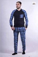 Мужская пижама в клетку хлопковая синяя кофта со штанами летняя 44-60р.