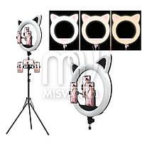 Кольцевая светодиодная лампа для макияжа RK-45 на 65 Вт, черная