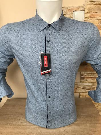 Рубашка ARMA slim с принтом, фото 2