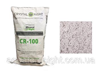 Сrystal Right CR100 (28,3 л) ефективно очищає воду від кальцію, магнію, заліза, марганцю і амонію (28,3 л )