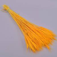 Натуральная пшеница желтая