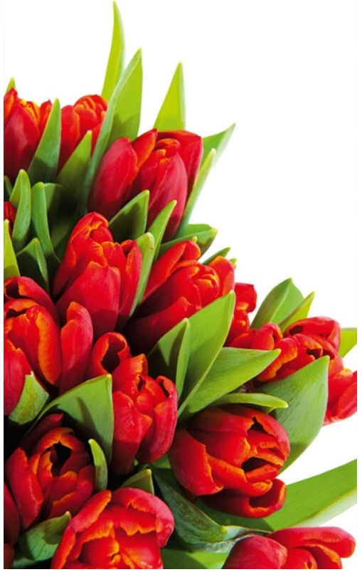 Подарочный пакет СРЕДНИЙ 17*26*8 см Тюльпан красный