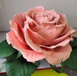 Фоамиран 1мм светлая роза рулонный, фото 4