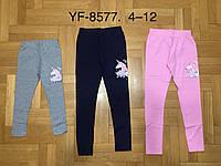 Лосины для девочек оптом, Miss WIfi, 4-12 лет., арт. YF-8577