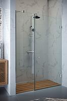 Стеклянная дверь в душ Onyx