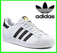 Кроссовки Adidas Superstar Белые Адидас Суперстар (размеры: 42,43,44) Видео Обзор