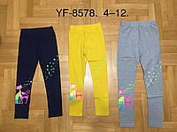 Лосины для девочек оптом, Miss WIfi, 8-16 лет, № YF-8578