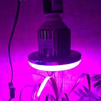Фитолампа Е27 16Вт для растений