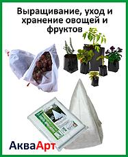 Выращивание уход и хранение овощей и фруктов